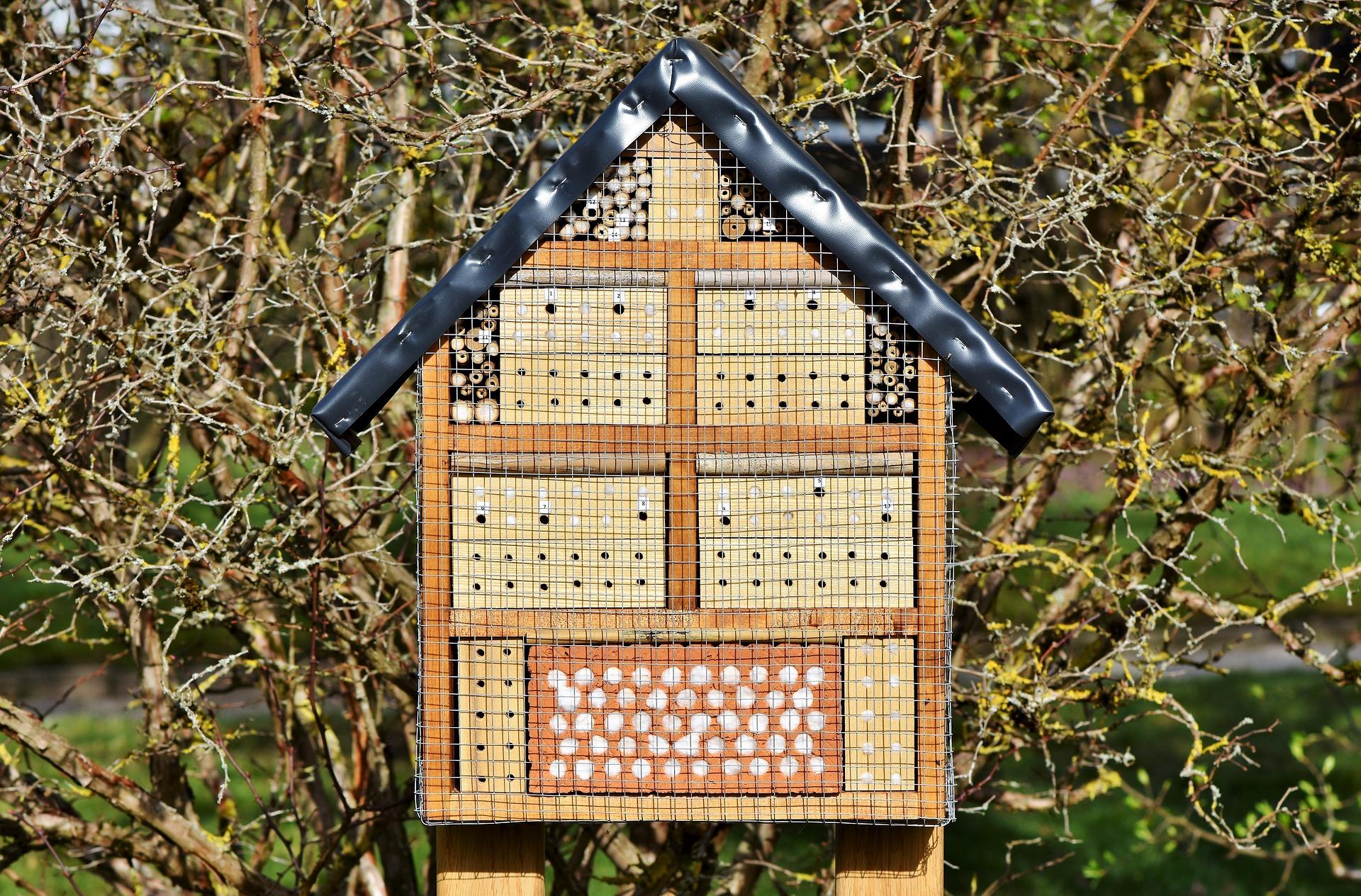Hotel A Insecte Fabrication fabrication d'un hôtel à insectes | schilliger