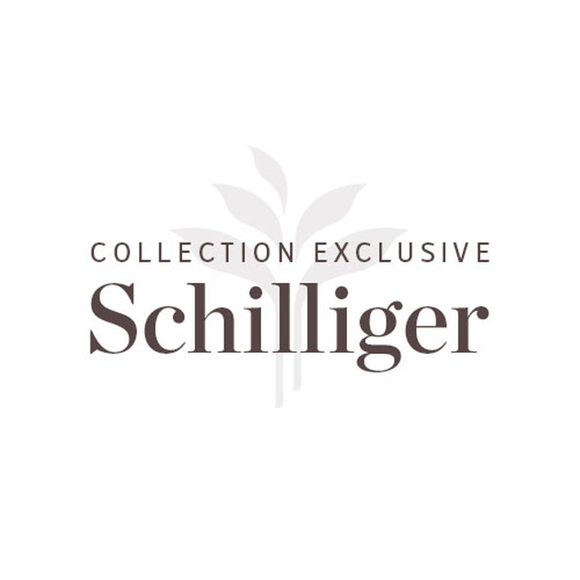 Collection Exclusive Schilliger