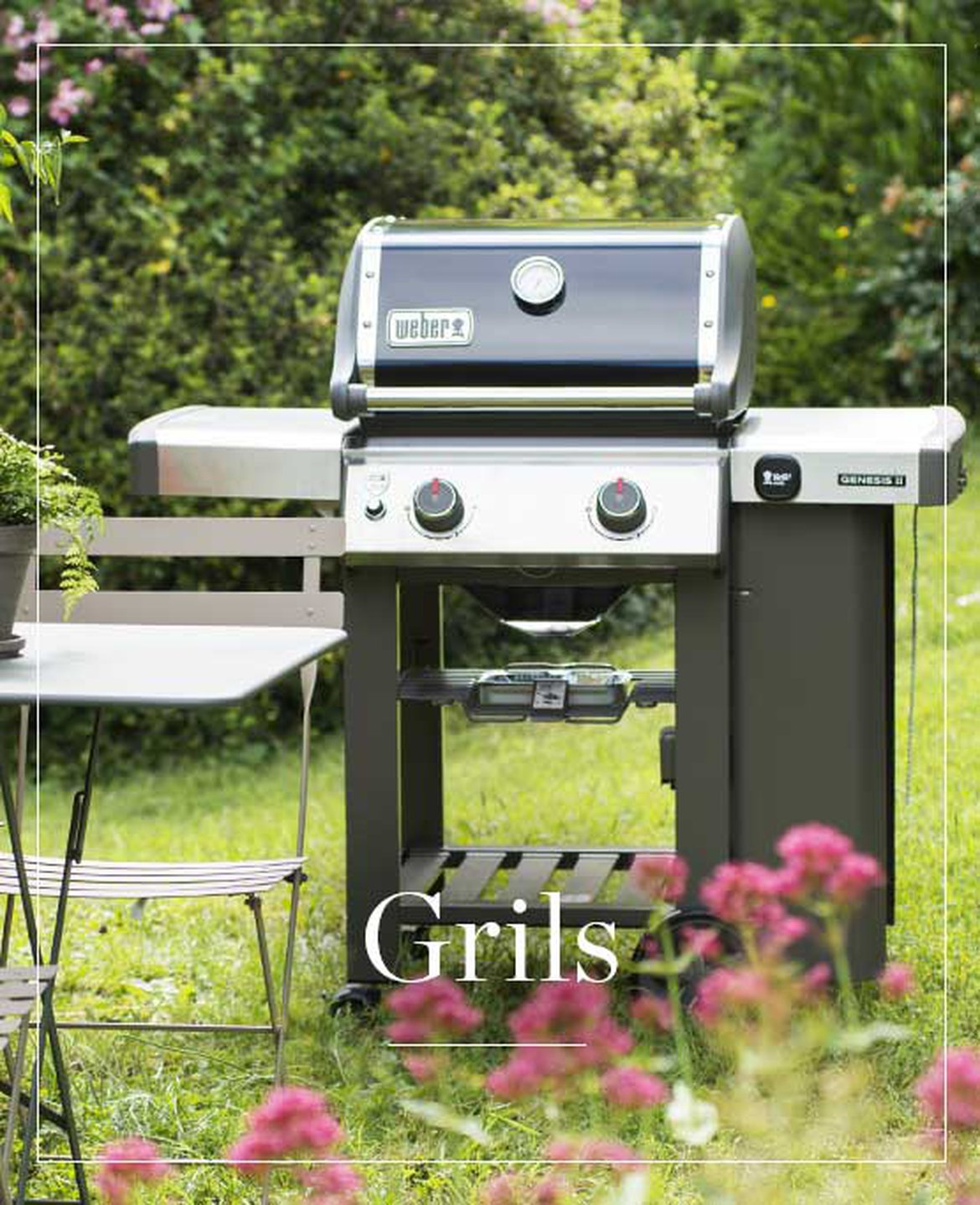 Barbecue, grills