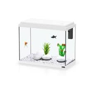Aquarium KIT 30 Blanc 30x15x30 (10L)
