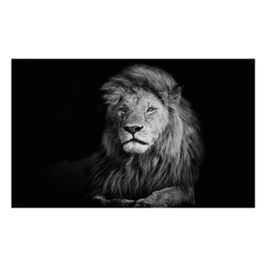 Tableau Lion rectangle  150x100cm