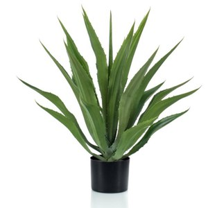 Schilliger Sélection  Agave artificiel  70cm