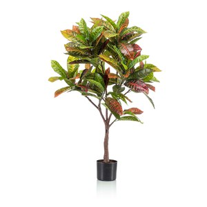 Schilliger Sélection  Croton artificiel  120cm