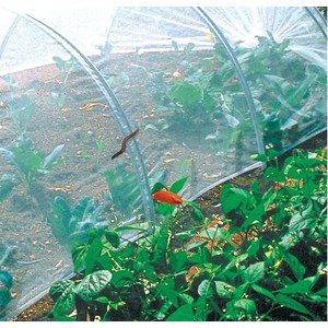 BIOCONTROL Filet anti-insectes  2.20x10m
