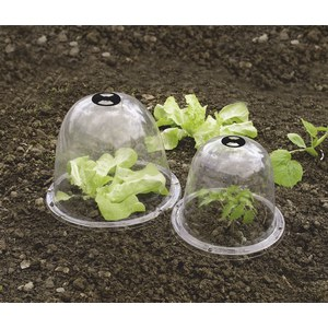 BELL Lot 3 cloches transparente PVC  Ø 0.25m