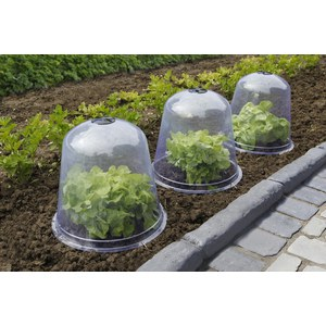 BELL (3) Lot 3 cloches transparente PVC  Ø 0.33x0.3m