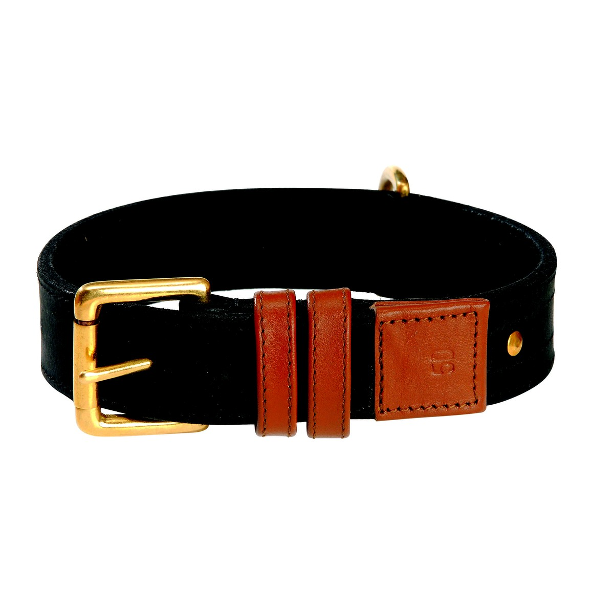 Bobby urban dog Collier urban dog T35  35